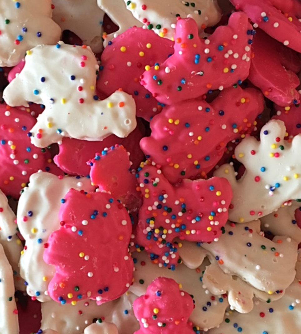 Icing Animal Cookies